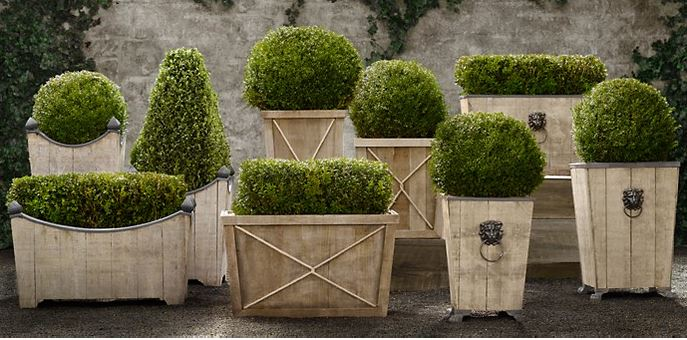 Outdoor decorating ideas for patios and other outdoor living spaces include topiaries like these from Restoration Hardware, says Lisha Maxey, senior designer with Outdoor Homescapes of Houston. More outdoor decor ideas from this Houston outdoor designer at www.outdoorhomescapes.com