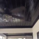 screenshot wayne outdoor patio ceiling