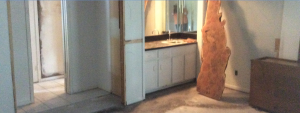 screenshot before fox vanity area